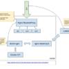 [自分用メモ][container][docker]reverse proxyとしてTraefikを使用し、docker環境でL