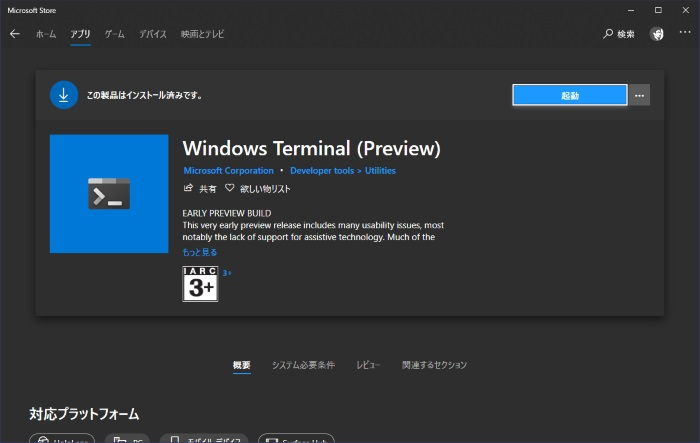 windows_terminal_pre