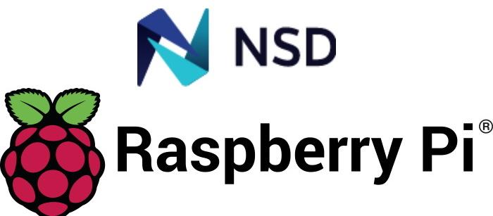 [RaspberryPi][NSD4] RaspberryPiにNSD4.0.0b4(スレーブ側)を導入してみた。